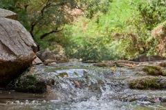 fiume Rabbi